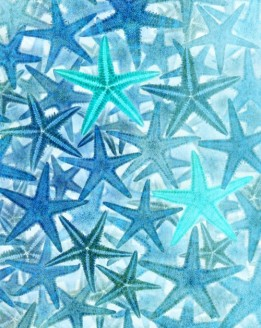 Starfish Background 20-Jan-2016